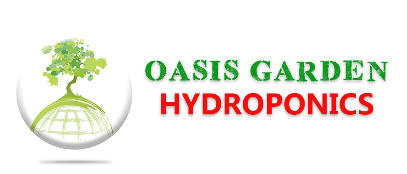 OASIS BANNER